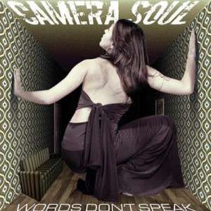 camera-soul-words-dont-speak